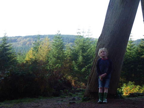 A blond child stands in front of a tree trunk. Forest in background